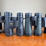 Best Birding Binoculars under $300: Tested & Reviewed (2021)