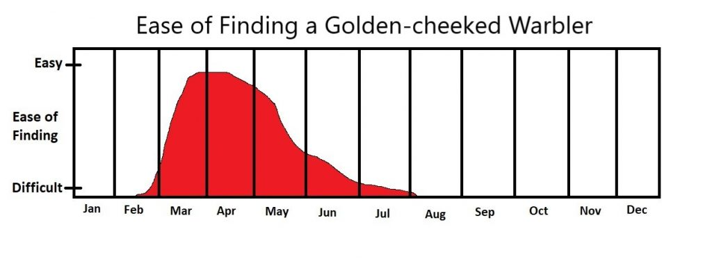 When to See a Golden-cheeked Warbler in Austin Texas